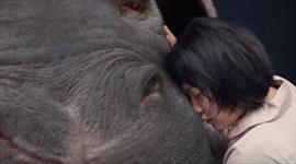 Film Okja - je zrejmé, že Zlatú palmu nezíska?